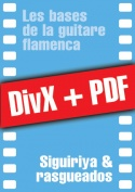 011-03-video-guitare-flamenca.jpg