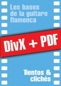 011-07-video-guitare-flamenca.jpg
