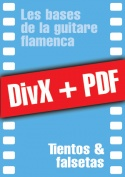 011-08-video-guitare-flamenca.jpg