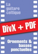 062-06-video-guitare-celtique.jpg