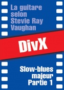 113-07-video-stevie-ray-vaughan.jpg
